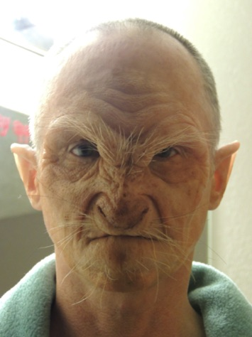Grandma Wolf Prosthetic Application